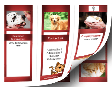 Veterinary Brochure-Trifold Paper